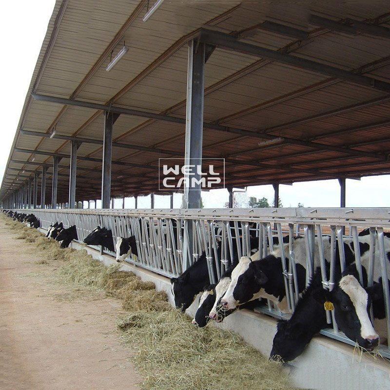 OEM steel shed wellcamp light steel shed prices