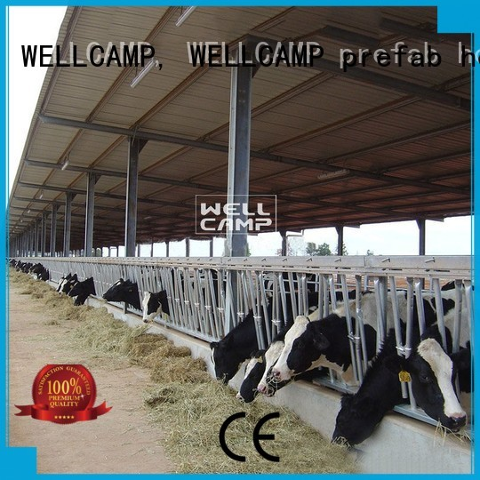 steel shed prices cow panel WELLCAMP, WELLCAMP prefab house, WELLCAMP container house Brand company