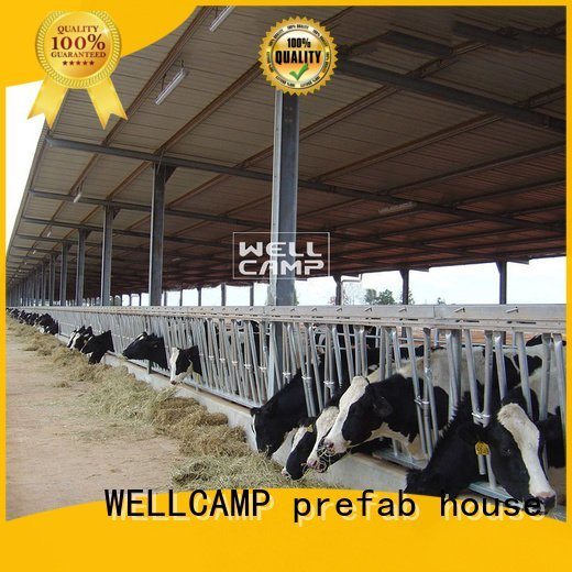 wellcamp color steel shed prices
